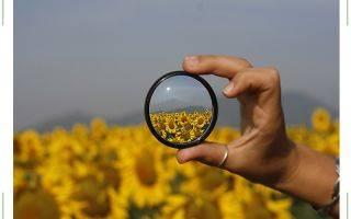 Как видит человек со зрением минус 2? причины и корректировка зрения
