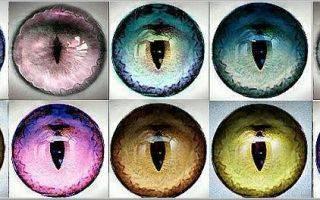 Радужные линзы для глаз все цвета радуги