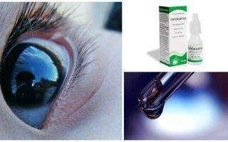 Список глазных капель от глаукомы