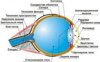 Причины эпиретинальной мембраны глаза