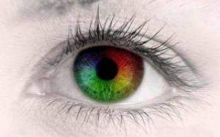 Дальтонизм: какие цвета не различают дальтоники, виды цветоаномалии у человека
