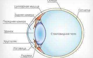 Узкоугольная глаукома что это такое