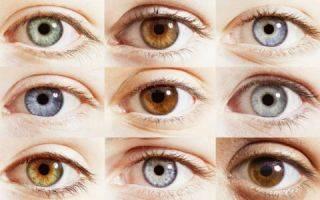 Как определить форму, тип, расположение, посадку и размер глаз