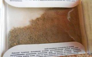 Бадяга против синяков под глазами: свойства и применение
