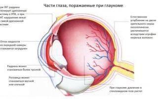 Аналоги глазных капель баларпан