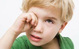 Инструкция по применению глазных капель сигницеф, аналоги и отзывы