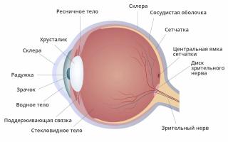 Черные точки перед глазами: причины и методы лечения