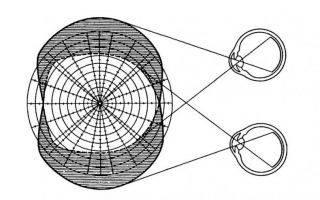 Периметрия: как делается, расшифровка, нормальные показатели