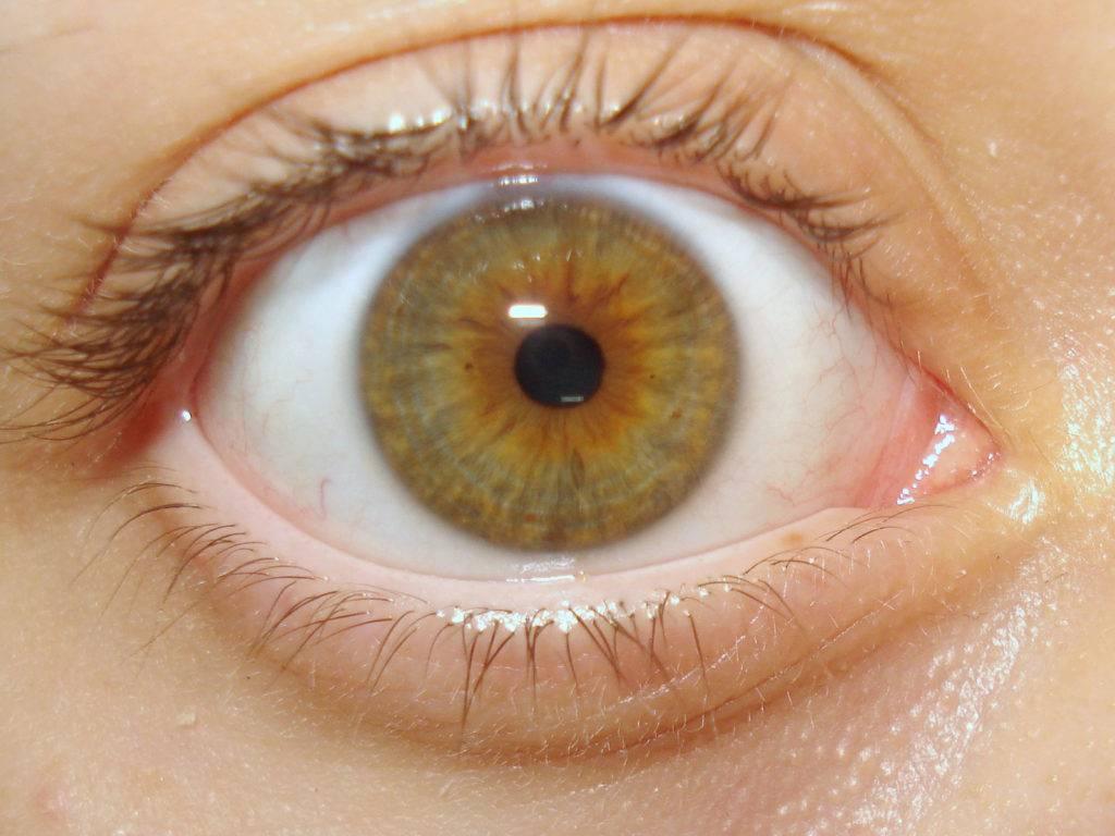 Появились звёздочки в глазах: причины и лечение oculistic.ru появились звёздочки в глазах: причины и лечение