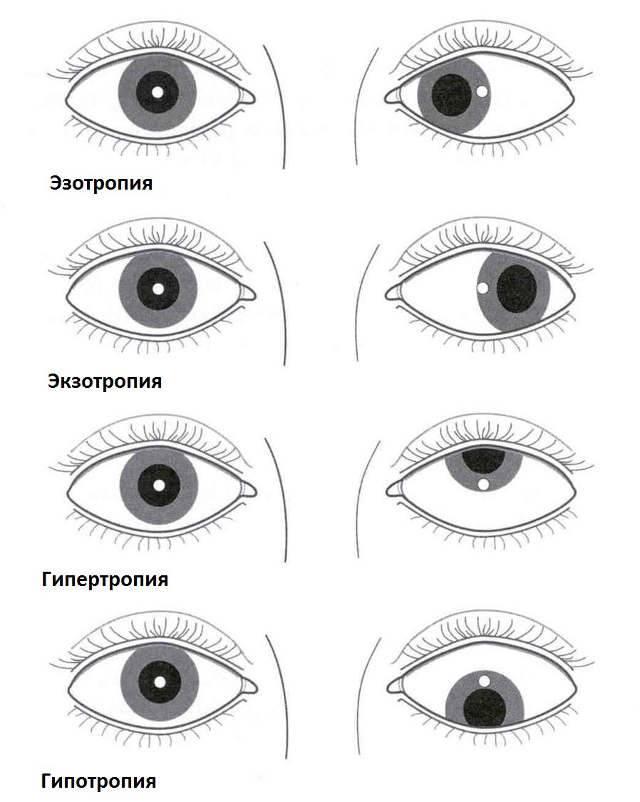 По глазам вижу. взгляд. | психология внутри
