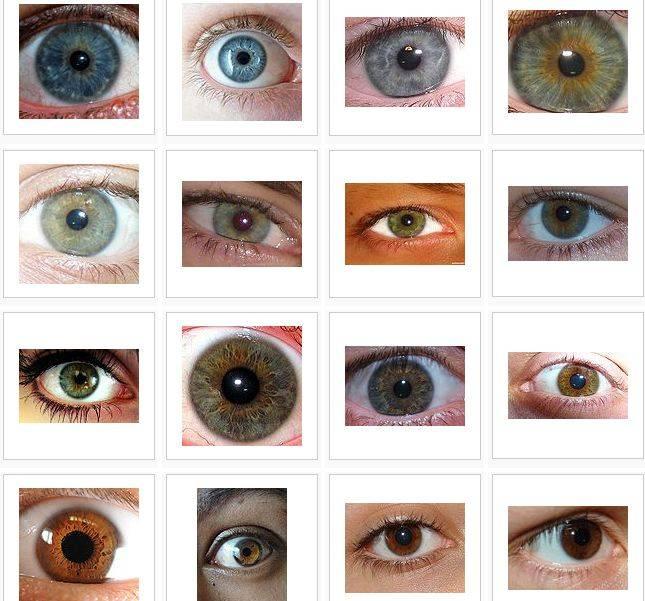 Цвет глаз и характер. обладатели зелено-карих, серо-карих и серо-каре-зеленых глаз | mystery life