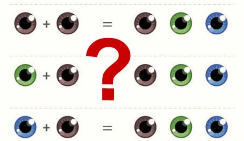 Таблица цвета глаз родителей и детей