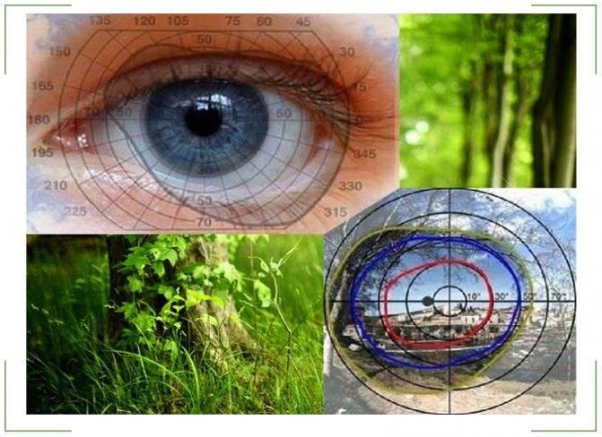 Туннельное зрение: симптомы и симптомы