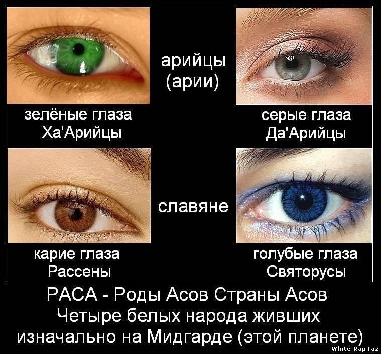 Цвет глаз и характер. черные и карие глаза