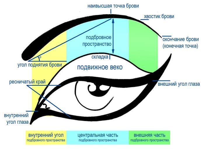 Выпуклые глаза (57 фото): пошаговая инструкция макияжа для больших карих и голубых глаз, как правильно рисовать стрелки