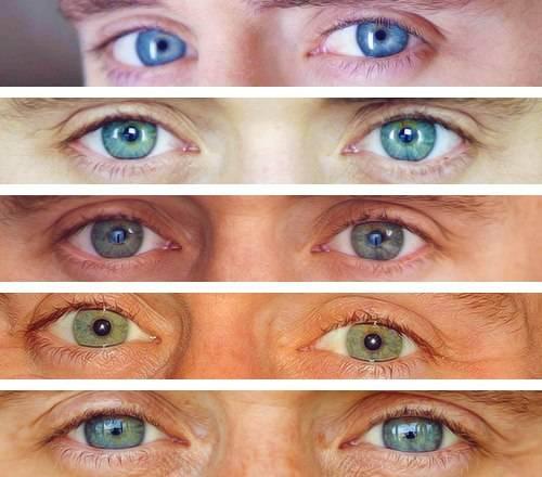 Глаза хамелеон значение