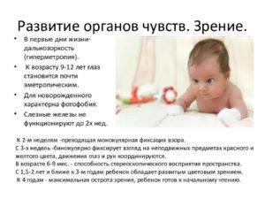 Все о зрении у новорождённых: этапы развития по месяцам oculistic.ru все о зрении у новорождённых: этапы развития по месяцам
