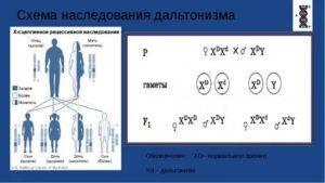 Как передается дальтонизм: пути передачи и признаки заболевания