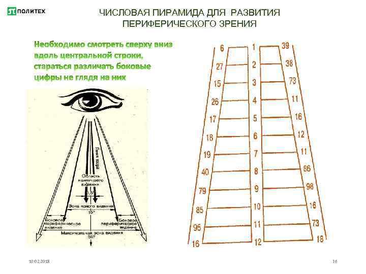 Что такое периферическое зрение и как его развивать oculistic.ru что такое периферическое зрение и как его развивать