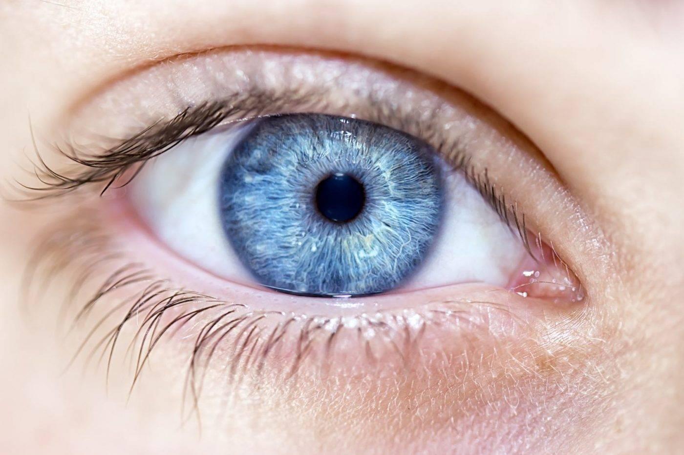 Возможен ли фиолетовый цвет глаз у человека: фото людей с такими глазами