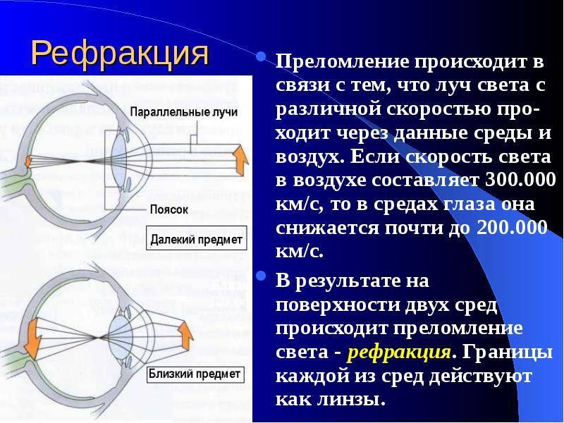 Рефракция | справочник врача