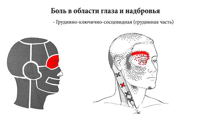 Болит глаз под верхним веком больно нажимать чем лечить дома