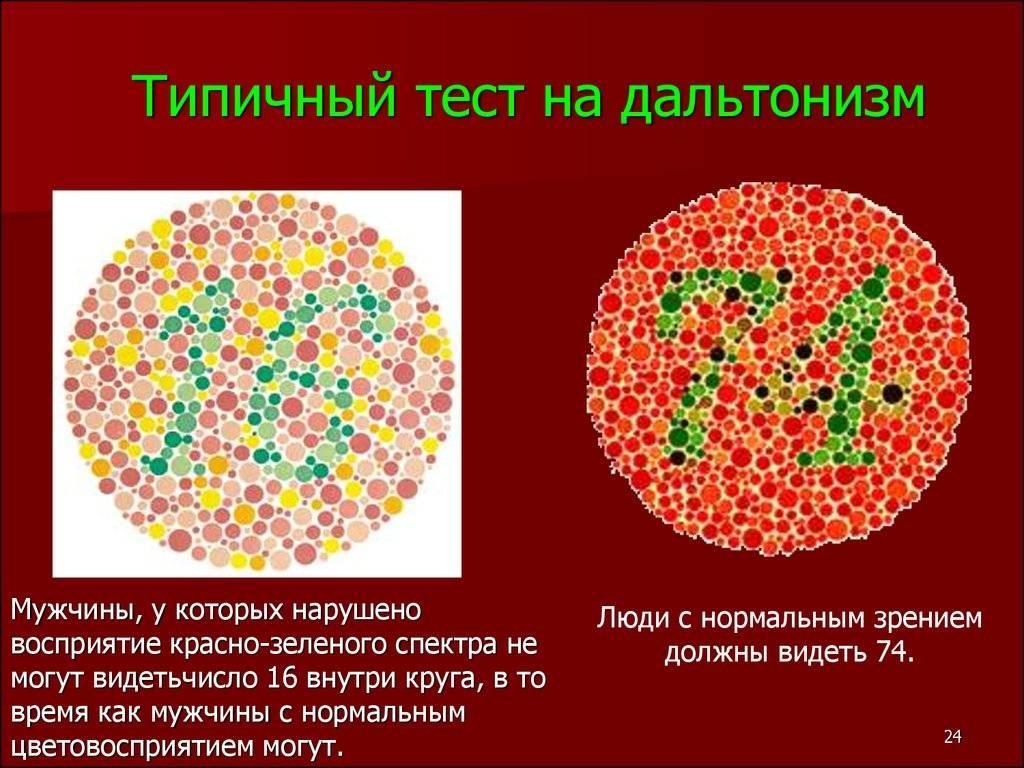 Дальтоники: какие цвета не различают и как это лечится