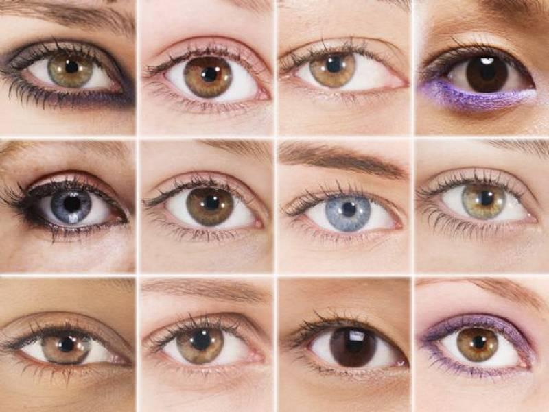 Как выглядит глаз в разрезе