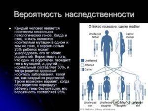 Что передается по наследству от родителей? | lisa.ru