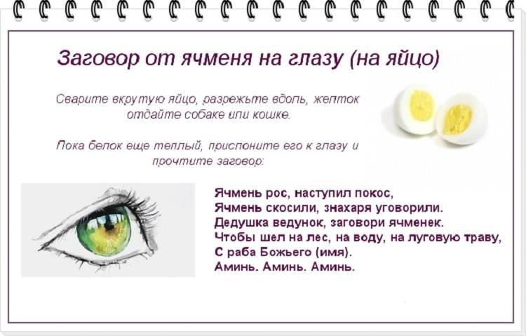 Глазные капли от ячменя на глазу - мазь и капли от ячменя | медицинский портал spacehealth