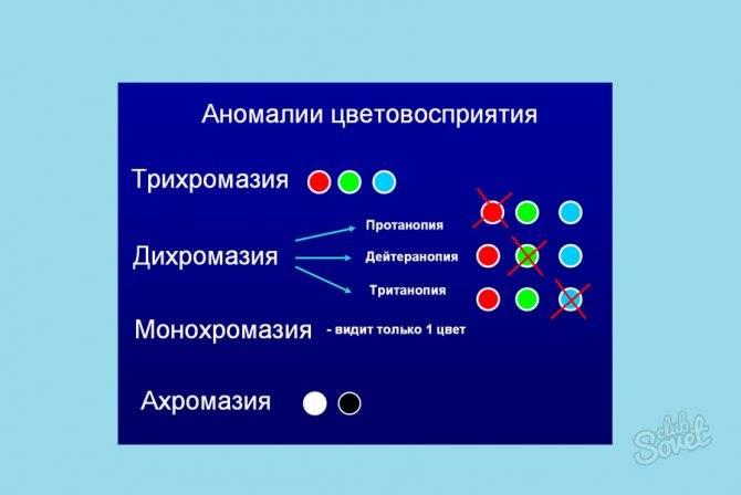 Аномальная трихромазия тип с. аномалии цветового зрения (нормальная, аномальная трихромазия; дихромазия; монохромазия; дальтонизм; протаномалия; дейтераномалия; тританомалия)