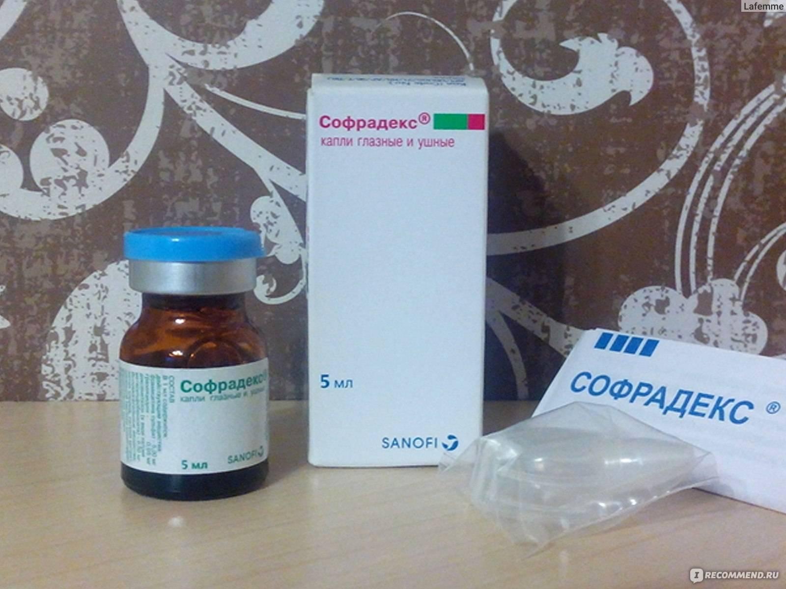 Софрадекс инструкция по применению: глазные капли взрослым, дешевые ушные аналоги, от чего лекарство, мазь для глаз