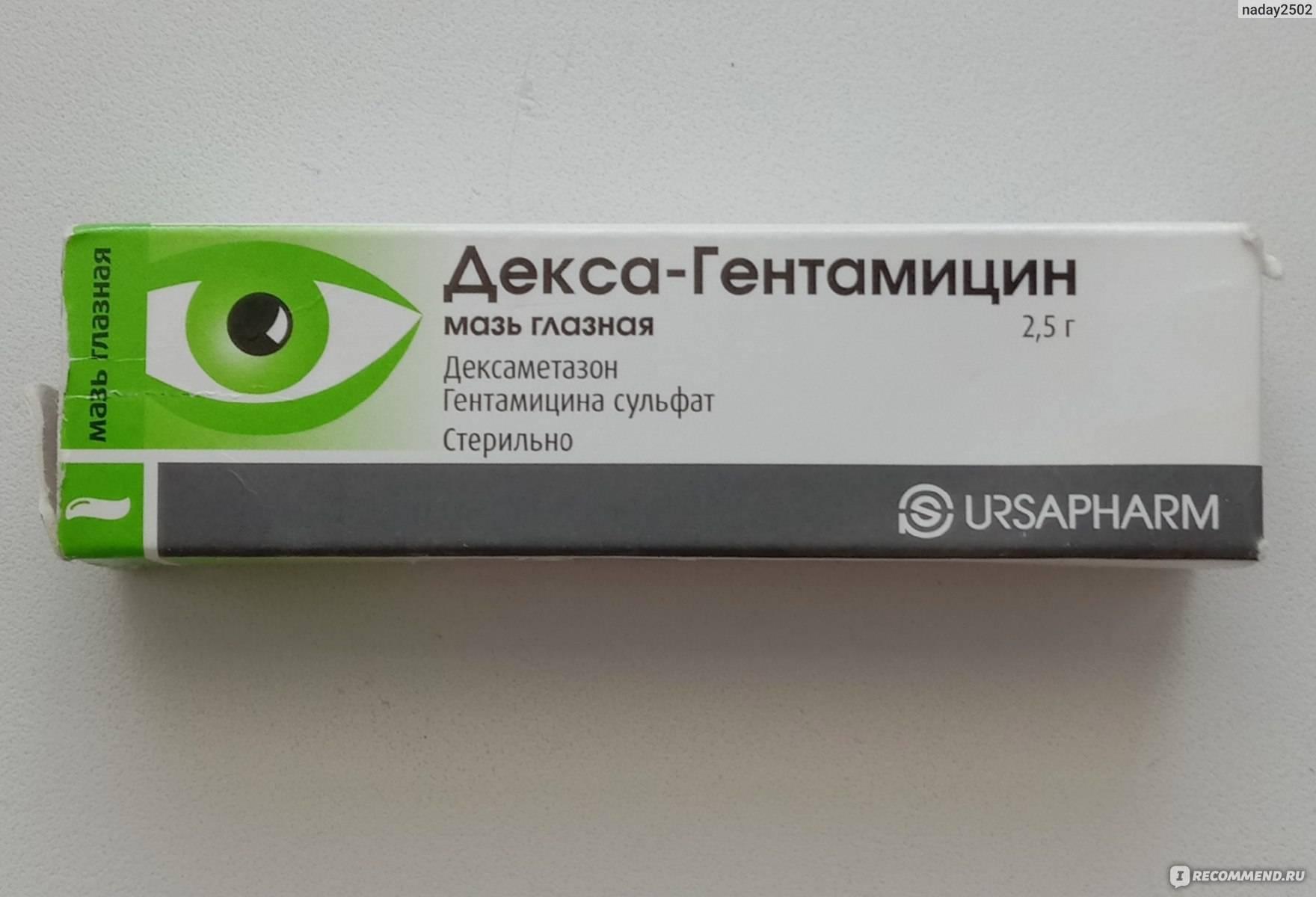 Декса гентамицин: инструкция по применению, глазная мазь и капли при халязионе, отзывы