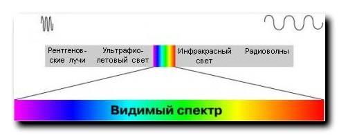 Женщина, которая видит невидимые цвета | иновед.ру - мистический журнал
