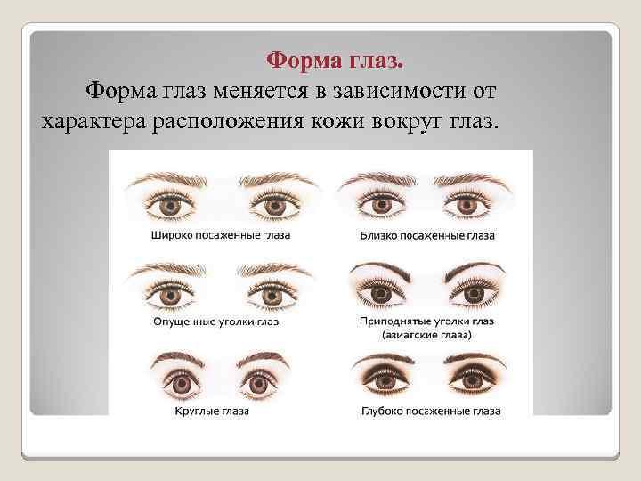 Форма глаз: на что влияют виды и типы глаз человека?