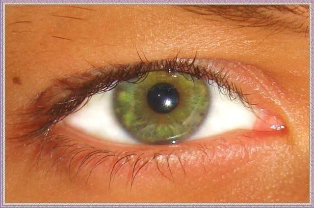 Разновидности цвета глаз: янтарные, красные, чёрные, зелёные