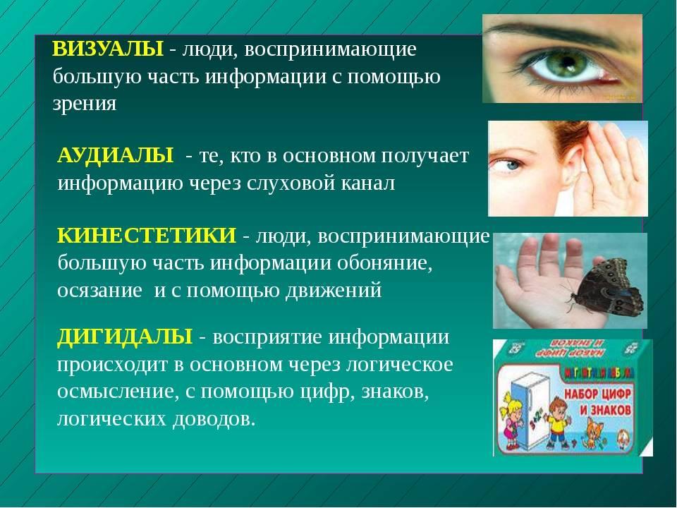 Сколько информации мы получаем через зрение