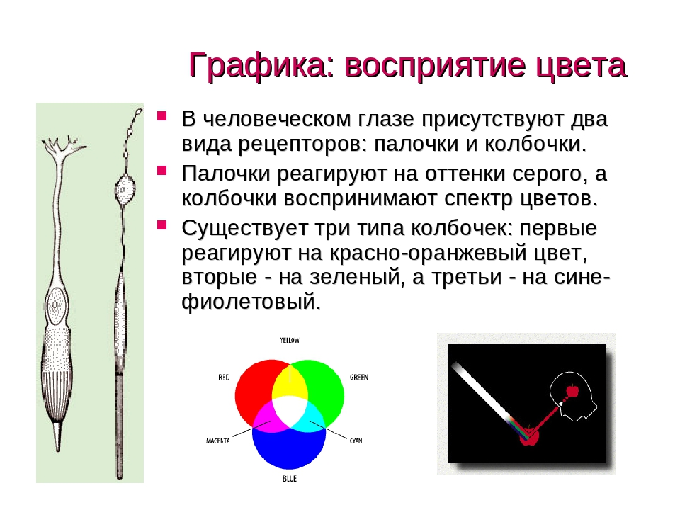 Глаза могут менять цвет с возрастом. почему меняется цвет глаз у человека? фото, причины и значение