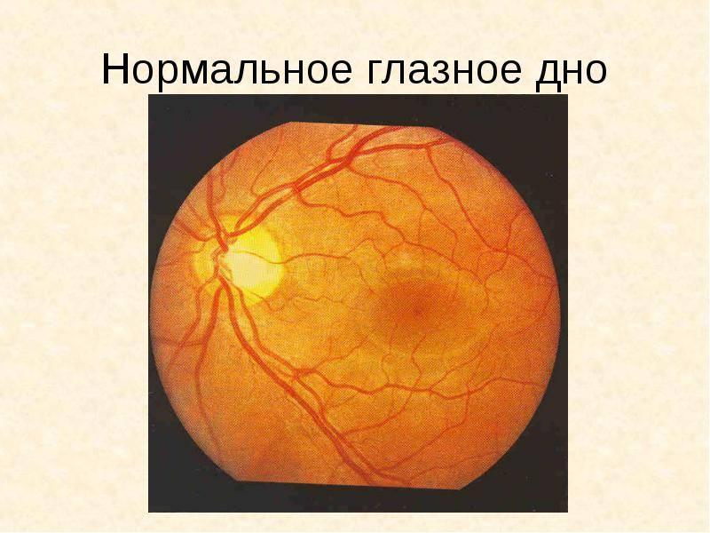 """Диагностика болезней глаз: основные методики - """"здоровое око"""""""