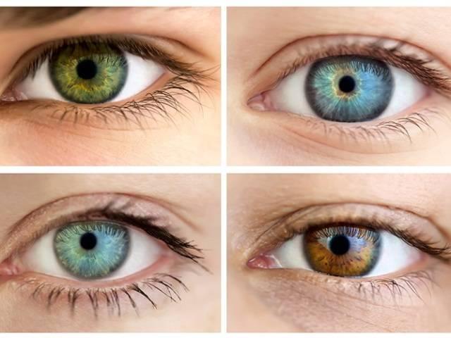 Глаза хамелеоны характеристика. глаза хамелеоны. или почему они меняют свой цвет? изменения цвета глаз в результате болезни.