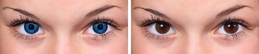 От голубого до коричневого
