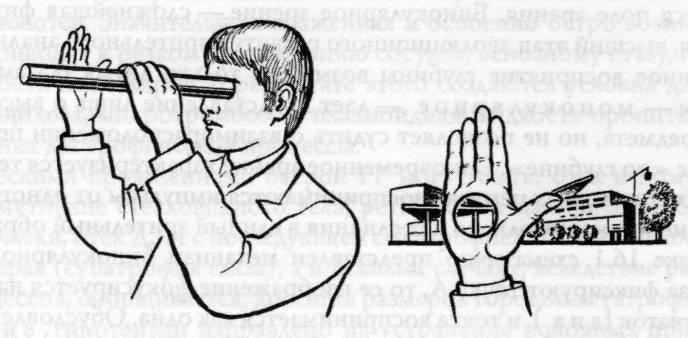 Бинокулярное зрение: его нарушения и тесты для проверки стереоскопического зрения у человека