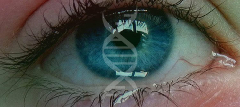 Болят глаза от линз - 9 причин этого явления и что делать: механическое воздействие, химическое повреждение, аллергия, синдром сухого глаза