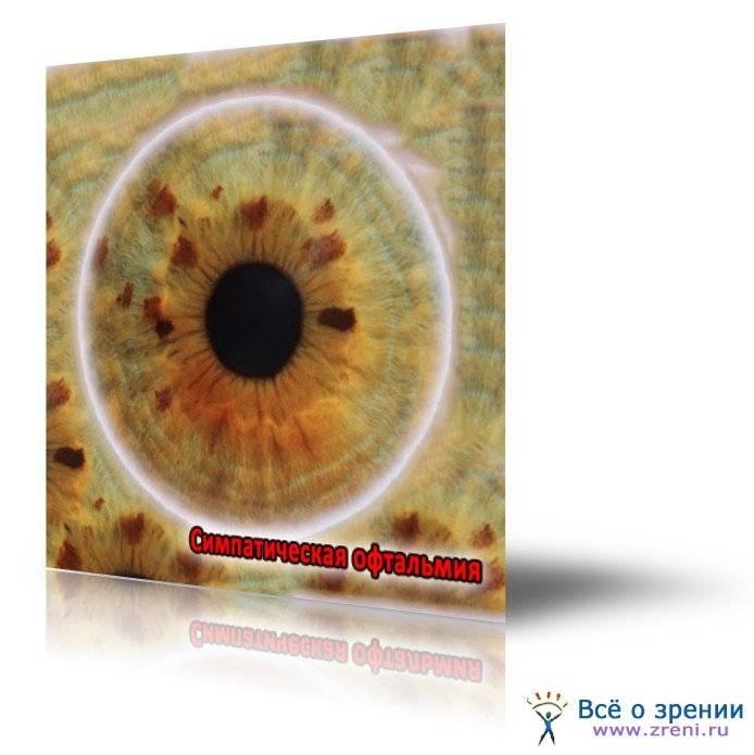 Симпатическая офтальмия или воспаление радужной и сосудистой оболочек глаза: что это такое, симптомы и лечение