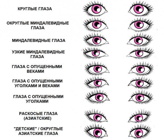 Как связаны форма глаз и характер человека