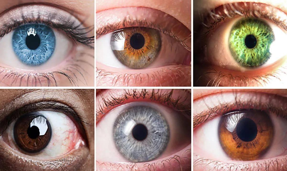 Почему с возрастом у человека может меняться цвет глаз oculistic.ru