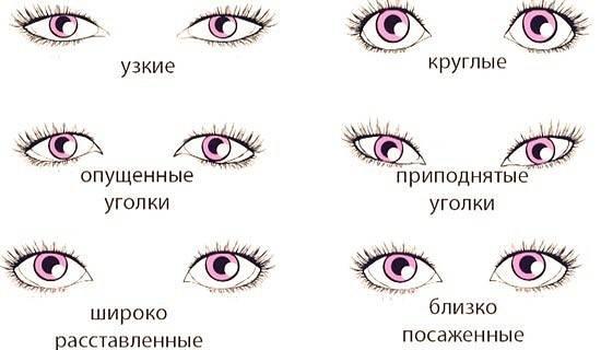 Как определить человека по глазам