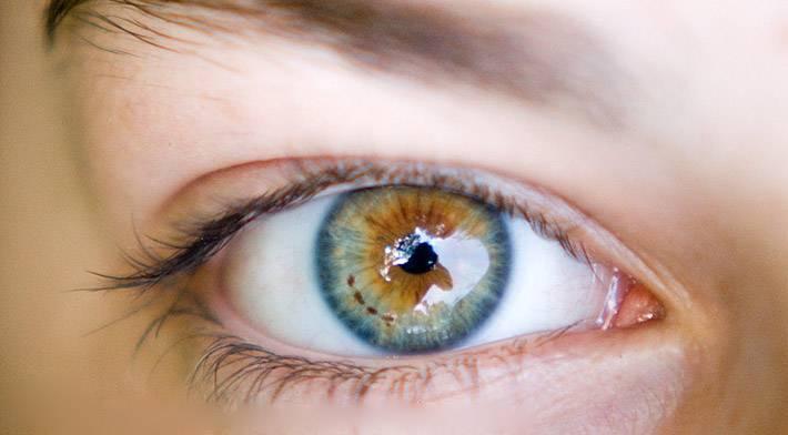 Глаза хамелеон значение | лечение глаз