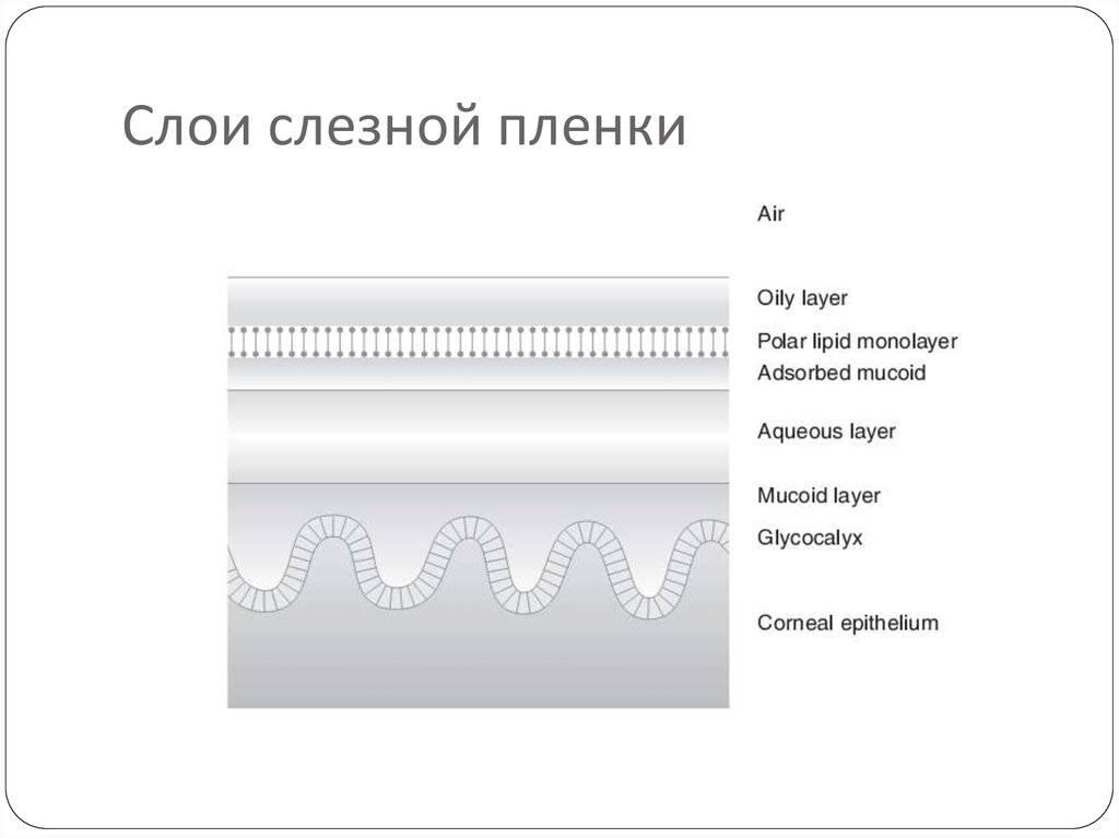 Виды глазных капель. часть четвертая. слезозаменители: алгоритм выбора