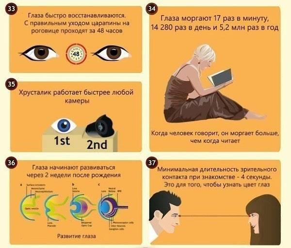 9 невероятных фактов о глазах и зрении - лайфхакер